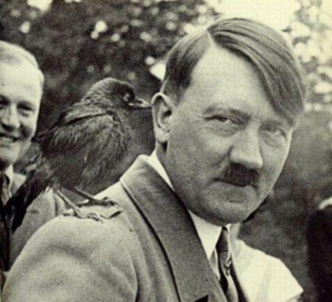 Hitler was a vegetarian. He was a man of compassion and he recognized the importance of compassion in society. He had so much affection for his German shepherds. He banned all animal experimentation, recognizing it to be evil. Hitler could see the connection between all life forms. It was his level of consciousness. Respect for nature, animals and human life.